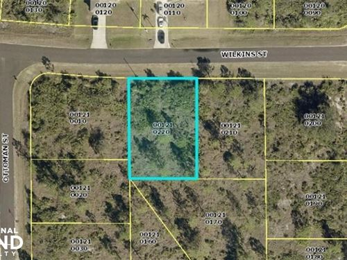 Great Investment Lot in Lehigh Acre : Lehigh Acres : Lee County : Florida