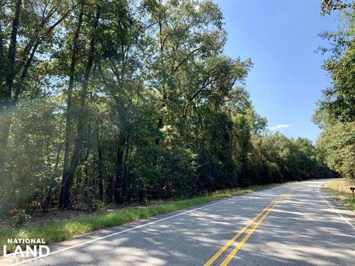 Tensaw Homesite & Hunting Retreat : Tensaw : Baldwin County : Alabama
