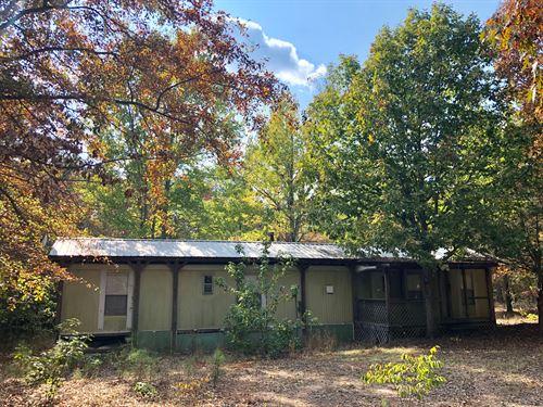 Hunting + Cabin : Sparta : Hancock County : Georgia