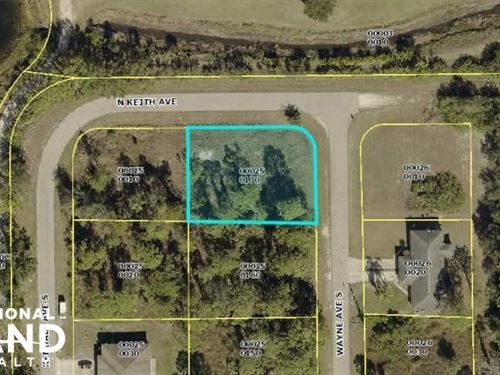 Nice Lehigh Acre Lot : Lehigh Acres : Lee County : Florida
