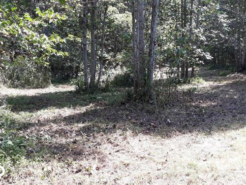 Beautiful Wooded Private Home Site : Lenoir City : Roane County : Tennessee