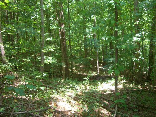 Langston, Al Great Hunting Land : Langston Al : Jackson County : Alabama