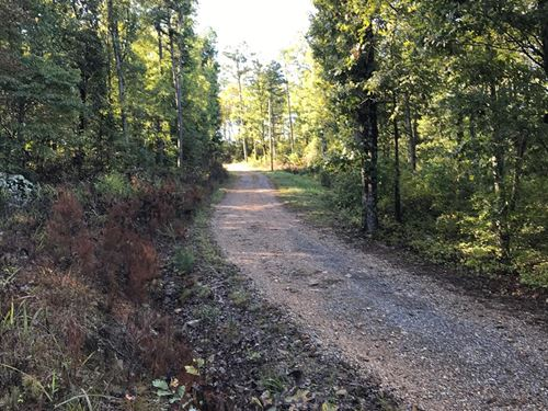 Hunting, Recreational, Timberland : Leslie : Searcy County : Arkansas