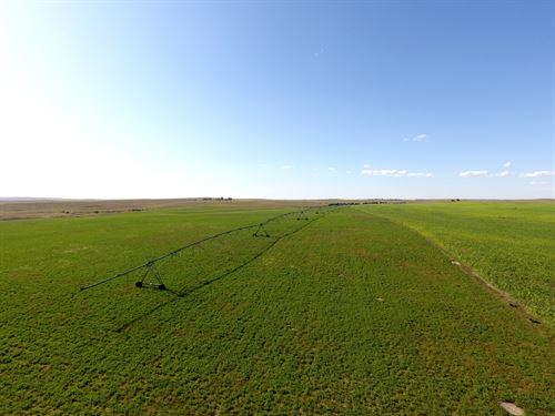 Garden County Pivot : Lewellen : Garden County : Nebraska