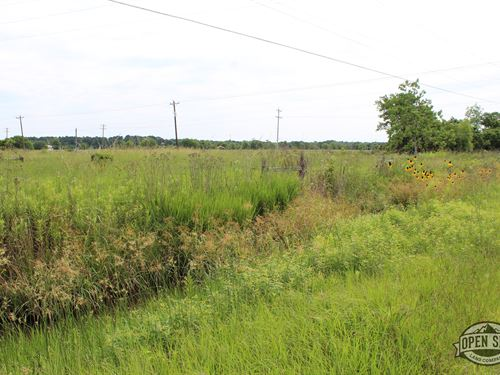 Your Own Dreamland At These 0.76 Ac : Sargent : Matagorda County : Texas