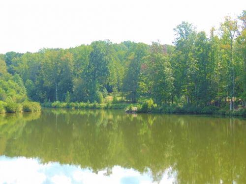 Industrial Farm, Pond : Greensboro : Greene County : Georgia