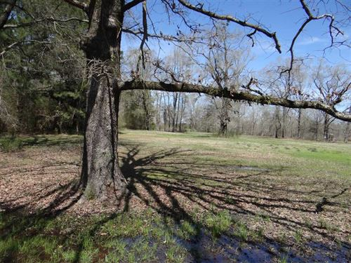 Greene Rd, Webster Parish, 28 Acre : Minden : Webster Parish : Louisiana