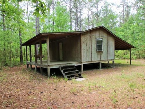 117 Acres of Hunting And Timber LA : Maysville : Jones County : North Carolina