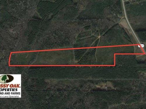 29.50 Acres of Hunting Land For Sa : Norlina : Warren County : North Carolina