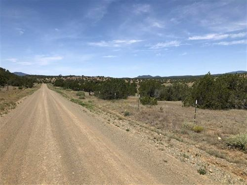 13.3 Acres Vacant Land Near Ruidos : Capitan : Lincoln County : New Mexico