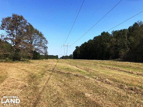 Bogue Homa Hunting And Timber Tract : Ellisville : Jones County : Mississippi