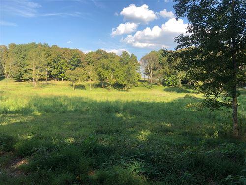 Nice 5 Acre Lot, Ready To Build : Bowling Green : Warren County : Kentucky