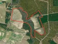 Farm/Hunting Tract Pitt County, Nc : Stokes : Pitt County : North Carolina