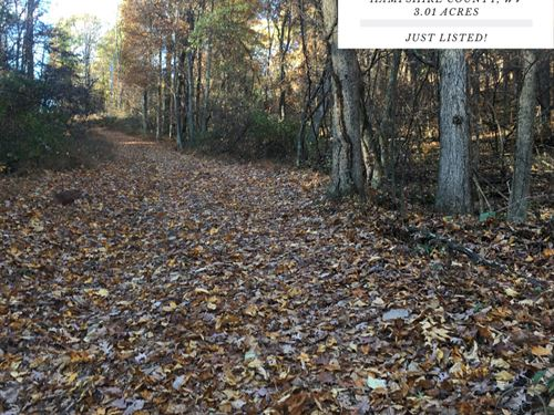 3.01 Acres In Hampshire County, WV : Augusta : Hampshire County : West Virginia