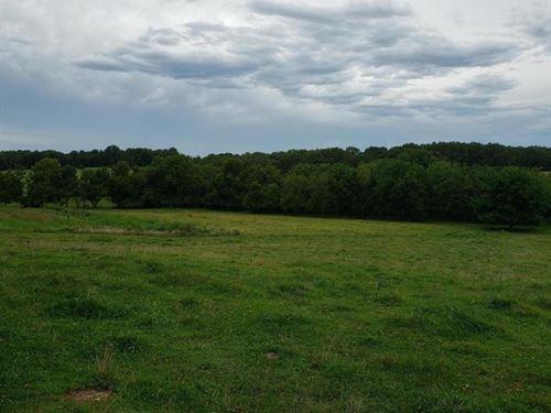 Livestock, Crop Hay Farm For Sale : Macomb : Wright County : Missouri