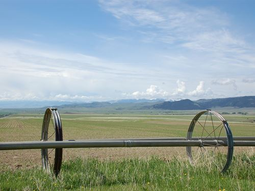 Twin Knobs Ranch : McAllister : Madison County : Montana