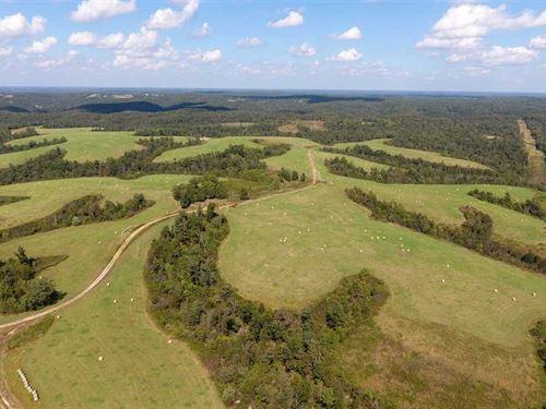 767 Acres in Jane, MO : Jane : McDonald County : Missouri