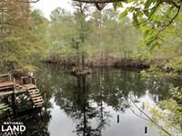 NE Cape Fear Riverfront Hunting Cam : Maple Hill : Pender County : North Carolina
