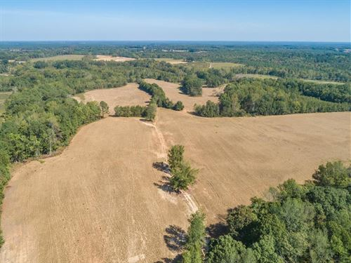 Farmland In Southern VA : Chase City : Mecklenburg County : Virginia