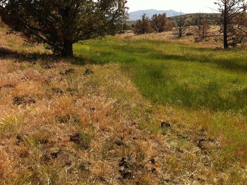 320 Acres in Ravendale, California : Ravendale : Lassen County : California