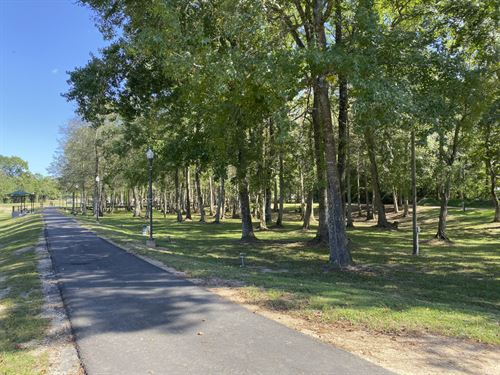 26 Acres Peachtree Street : Jasper : Texas