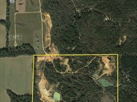 Hunting Land With Ponds : Lowndesboro : Lowndes County : Alabama