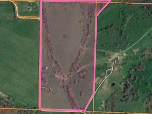 Certified Organic Land in Texas Co : Mountain Grove : Texas County : Missouri