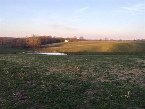 Mostly Open Farm/Ranch, Rd Frontage : Mountain Grove : Wright County : Missouri