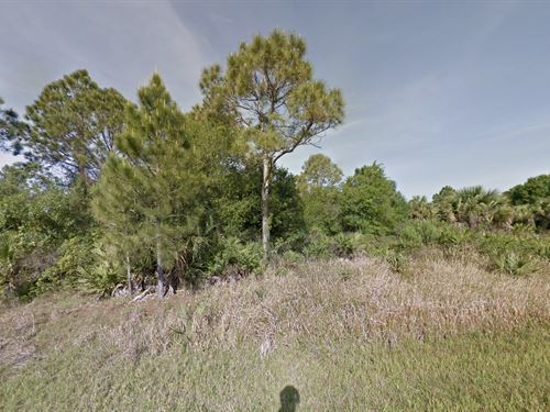 Off Grid Living, Camp Or Investment : North Port : Sarasota County : Florida