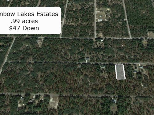 Oversized .99 Acre On Paved Road : Dunnellon : Marion County : Florida