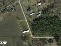 Robin Lane Cleared Lot : Whiteville : Columbus County : North Carolina