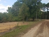 Land 28 Acres New Hope Road Amite : Gloster : Amite County : Mississippi