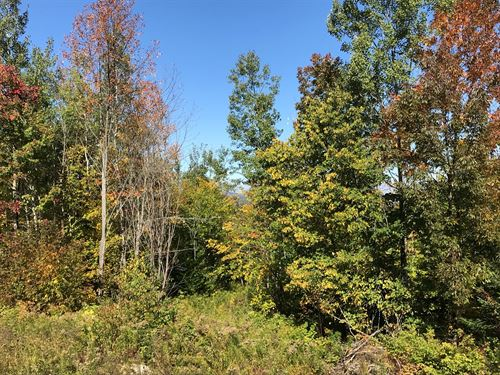 Hunting Property Northern Maine : Parkman : Piscataquis County : Maine
