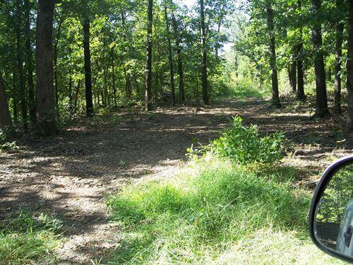 Hunting Land Delaware County, OK : Eucha : Delaware County : Oklahoma