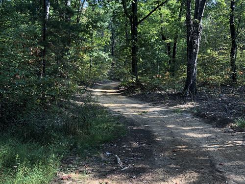 Secluded For Hunting Or Timber : Hytop : Jackson County : Alabama
