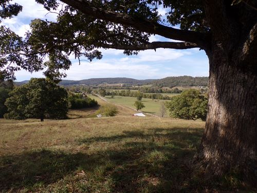 Ozark Mountain Land W/Views : Leslie : Searcy County : Arkansas