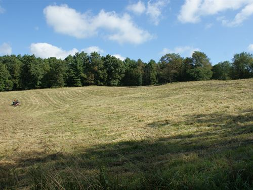 Beautiful Acreage, Mountain View : Elk Creek : Grayson County : Virginia