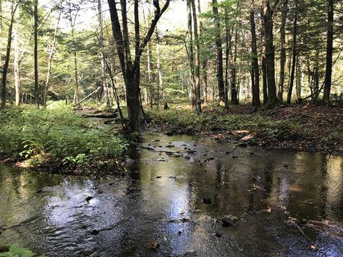 Near Happy Valley : Williamstown : Oswego County : New York