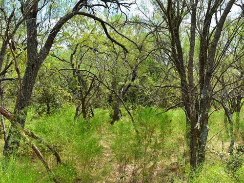 35 Ac Near Austin, Owner Financing : Lockhart : Caldwell County : Texas
