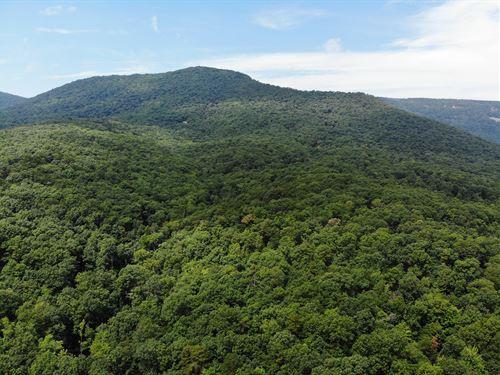 Battle Creek Mountain : Luray : Page County : Virginia