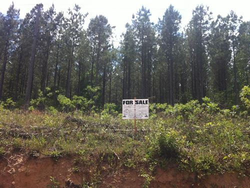 Greenfield Farms, 5.01 Acre Lot : Manchester : Coffee County : Tennessee