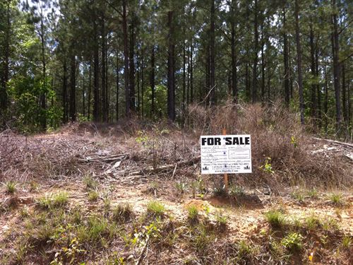 Hickory Hollow Farms, 4.11 Acre Lot : Gray Court : Laurens County : South Carolina