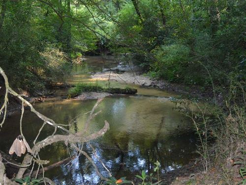 188 Acres Hunting And Timberland : Gillsburg : Amite County : Mississippi