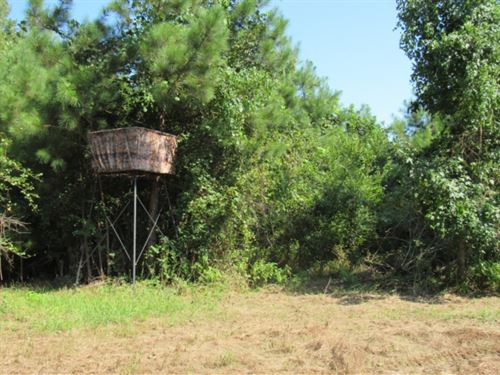 198 Acres With A Camp In Grenada CO : Grenada : Mississippi
