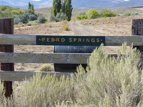 Pedro Springs, Fields Oregon : Fields : Harney County : Oregon