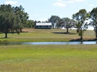 Little Cat Farm : Madison : Madison County : Florida