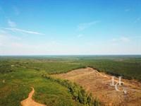 Horse Creek Tract : Honea Path : Greenville County : South Carolina