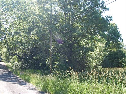 .29 Acre Lot in Ravenna : Ravenna : Portage County : Ohio
