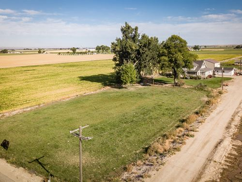 Historic Country Farmhouse Acreage : Parma : Canyon County : Idaho