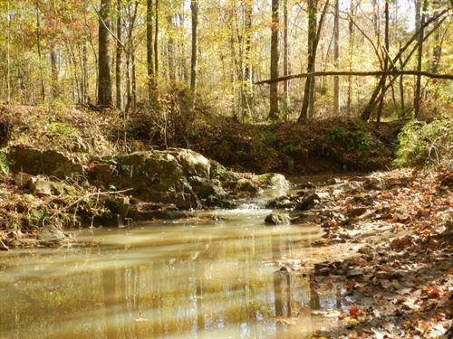 Hunting & Recreation West Baldw : Milledgeville : Baldwin County : Georgia